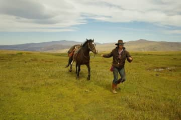 Working with horses in Patagonia, Argentina. Understanding horse psychology allows a trusting bond between human and equine.