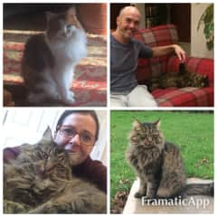 Looking after Trudy and Dylan (Saint Neots, England, January 2017) while their owners were in Sri Lanka.