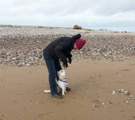 Karen walking Ozzy in Wales