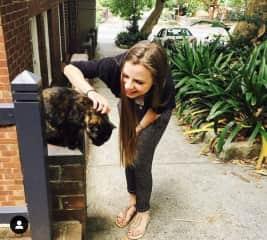 A friendly cat in Sydney, Australia