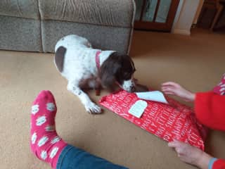 Jess enjoying unwrapping her christmas present, from her parents.