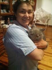 Wild life care Australian Wombat