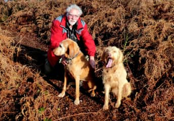 Penny and Inca Cannock Chase UK 2020