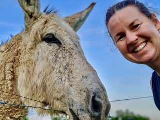 Amy & her first Donkey friend in Tennessee