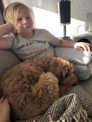 My son and one of the dogs we have been dogsitting in our home. She is beautiful labradoodle called Hertta.