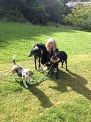 Me with best friend Liz's beagle, Phoebe, and neighbour Jo's two rescue greyhounds