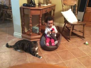 Our grand-daughter, starting to love animals. We sat Mushu for two weeks while parents in Orient.