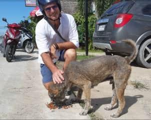 Chris feeding a sick dog in Thailand