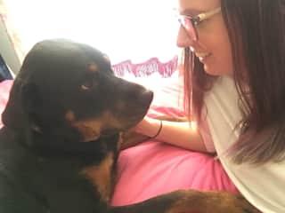 Lola the Rottweiler