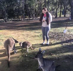 Did a 2 week road trip across Australia and met some kangaroos along the way.