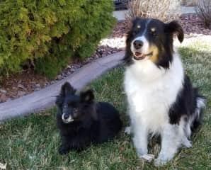 Suchi and Annie, best friends
