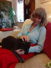 Alfie on Denise's lap.  He had only recently been rescued and re-homed,  so it took a few days before he came for a smooch.