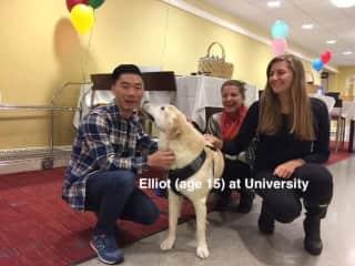 Elliot (therapy dog at University)