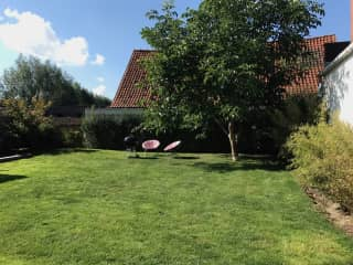 summertime garden - fully south facing and completely private!