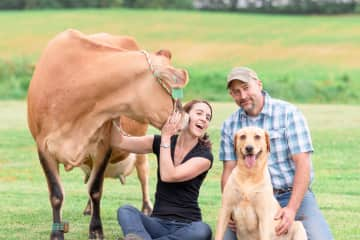 My husband and I and Snickerdoodle, a Jersey cow and Cletus, a red lab