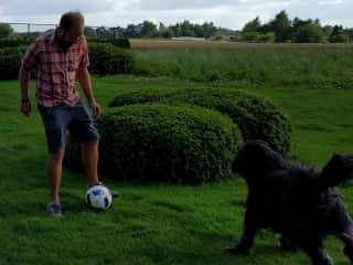 Playing with Mu in Belgium