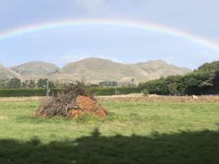 On our New Zealand road trip entering the Marlborough wine region near Blenheim, 4/19.