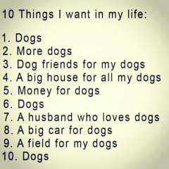 me & my interests