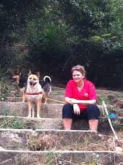 Kerry, Lady and Kiwi mountain walk