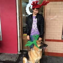 Maxx (my gorgeous GSD who's not passed) and I getting ready for XMas