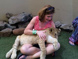 Even the big cats love Jean