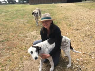 Sue loving the sheep guardian dogs in Spain