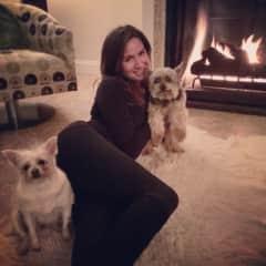 Watching my friend Darryl's babies...Lana and Samson. Fireside in Las Vegas.