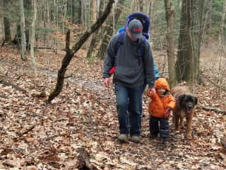 walking nearby trail with Grandchild and Leonberger