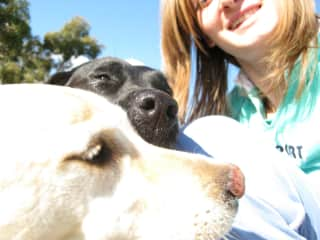 Celia with Labs Henri and Chloe in the Adelaide Hills
