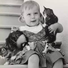 My first love - kitty cats