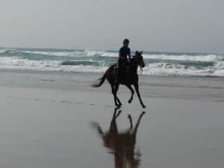 Working week-long equestrian trips along South Africa's Wild Coast.