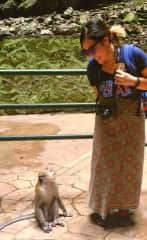 I love nature, long walks, hikes, and quiet afternoons. I ran into a monkey in Malaysia while I was spending a quiet morning at the park.