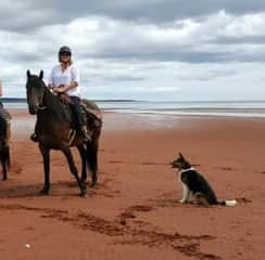 Me.. Lightning and Flora riding on the beach!