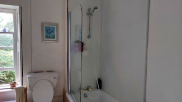 Over the bath shower (not electric)