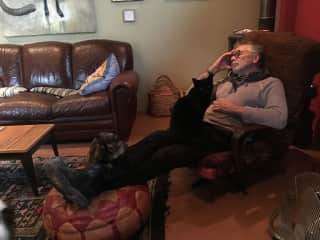 Ken is a cat whisperer. Dozing with Zucchini and Olive.