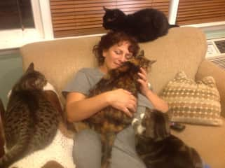 me and my kitties in NYC