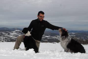 During a hike with Eden's host's dogs in the Pyreenees