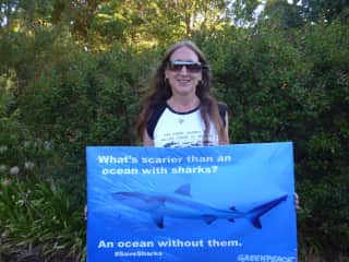 Wildlife and Animal rights: Anti shark cull campaign.