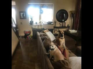 """Living Room with sectional and big 80"""" T.V."""