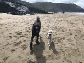 We both love the beach