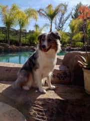 My girl poolside in California