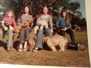 My sisters and me in 1975 with *deep breath* Keeshonds, Yorkies, Lhasa apsos, pygmy goats, our Persian cat, and, for some reason, our horses, ponies, and chickens, we're not in the photo.