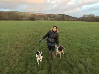 Nice long walks with these 2 fur babies around the English countryside!