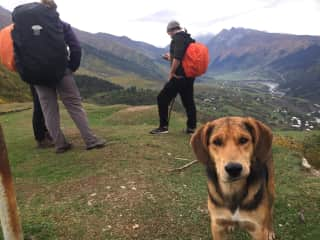 Hiking 2 days with the cutest guide (A wild dog who decided to follow us all along our trek)