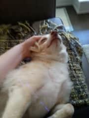 Loving snuggles