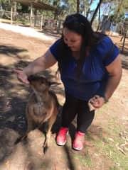 Sabrina petting a beautiful wallaby being pet in Lone Pine Koala Sanctuary, Australia.