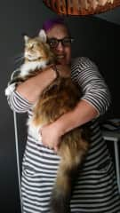 Neeley with Frida, the cat we cared for in Cologne. Isn't Frida gorgeous?