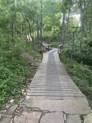 One of many great biking trails nearby. Bikes available to rent at several locations — or bring your own!