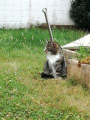 Mitya loves it outdoors