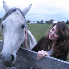 In case you can't tell, I adore horses. I'm dreaming of a house sit that lets me take care of and ride horses!